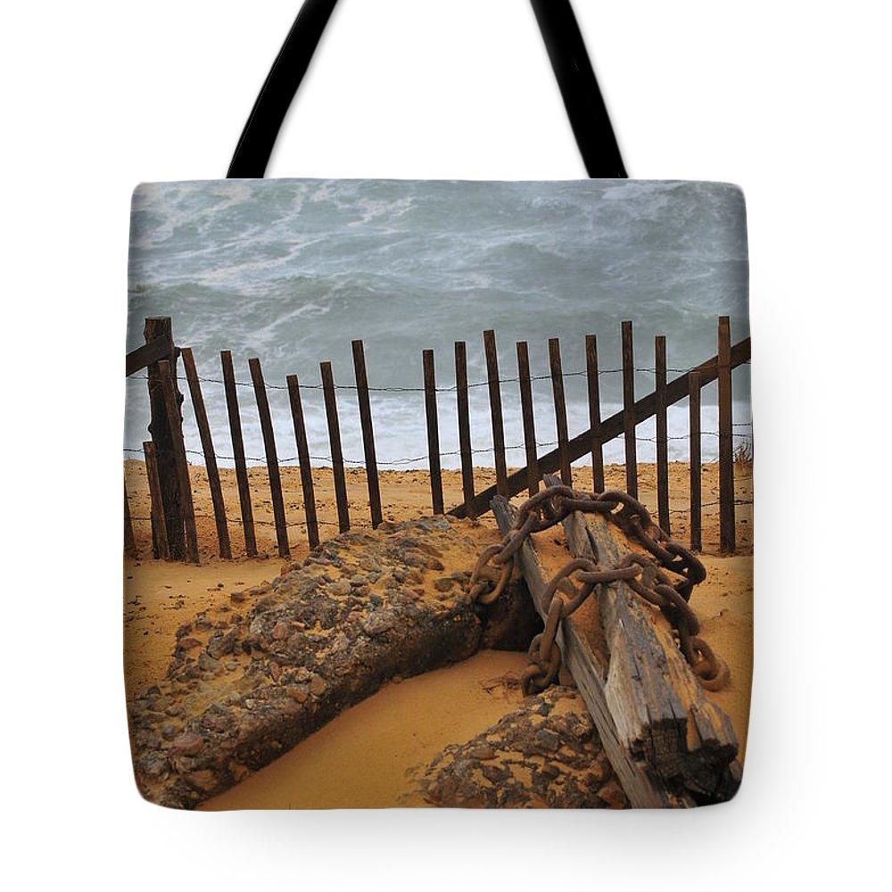 Ashore Tote Bag featuring the photograph Washed Ashore by Catherine Reusch Daley