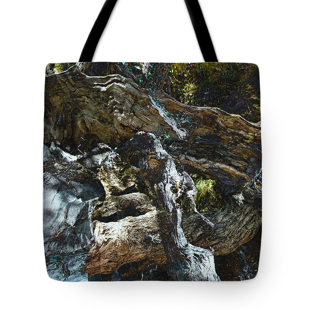 Trees Tote Bag featuring the photograph Washed Away by Kelly Jade King