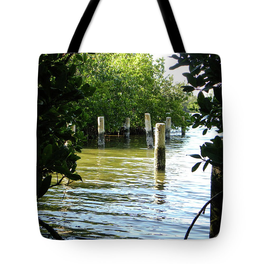Water Tote Bag featuring the photograph Washed Away by Ric Schafer