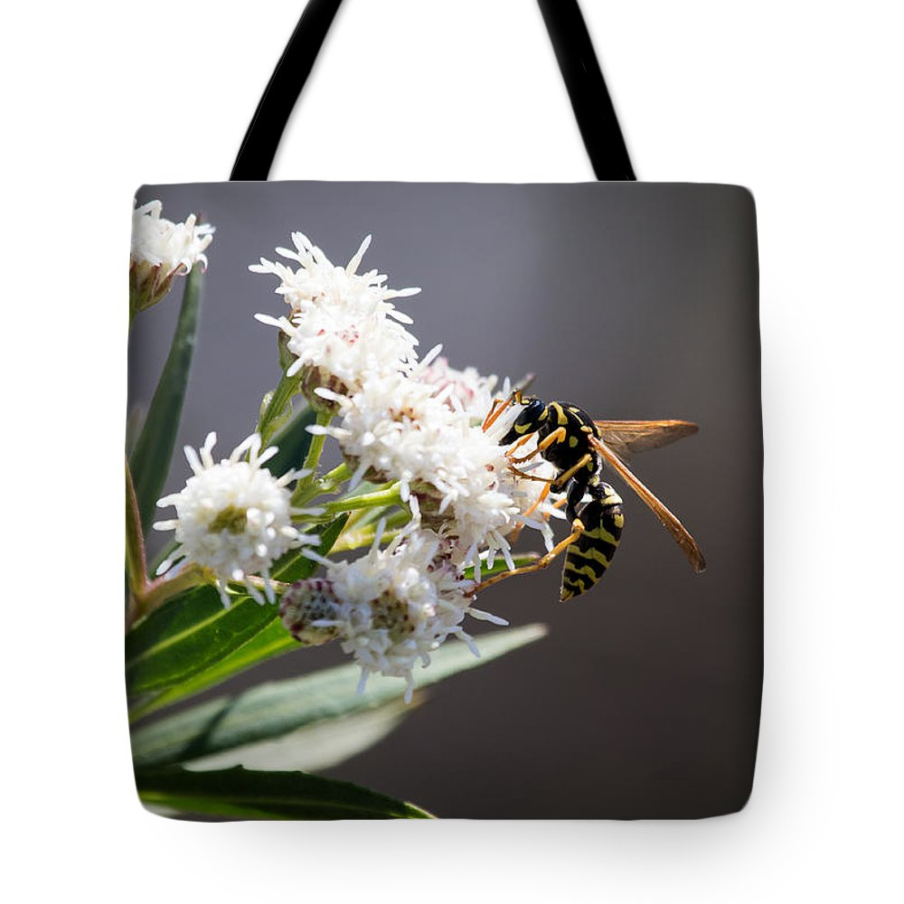 Wasp Tote Bag featuring the photograph Wasp Closeup by Brent Martin - My Photography Adventure
