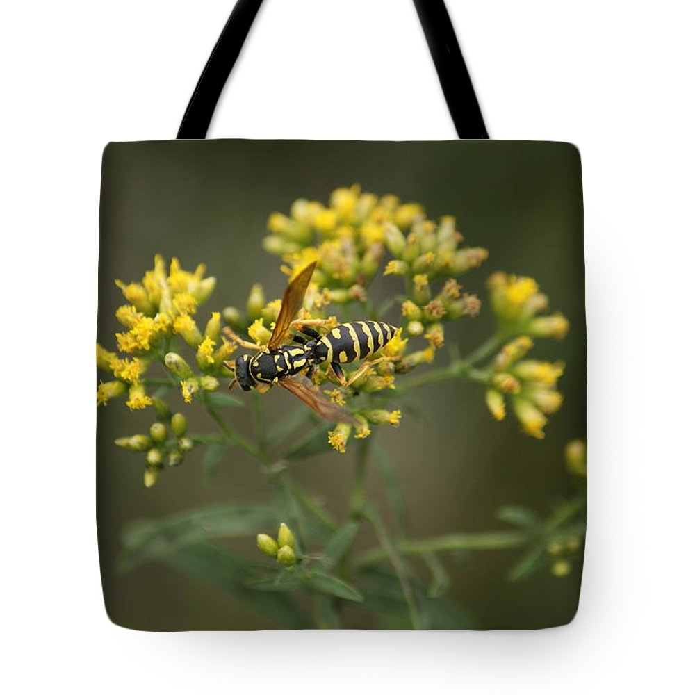 Insect Tote Bag featuring the photograph Wasp by Heidi Poulin