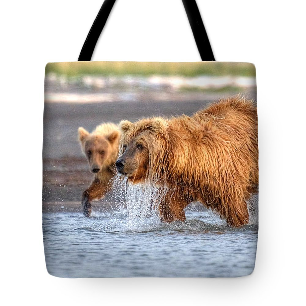Grizzly Bear Tote Bag featuring the photograph Watch How Ma Does It by James Anderson
