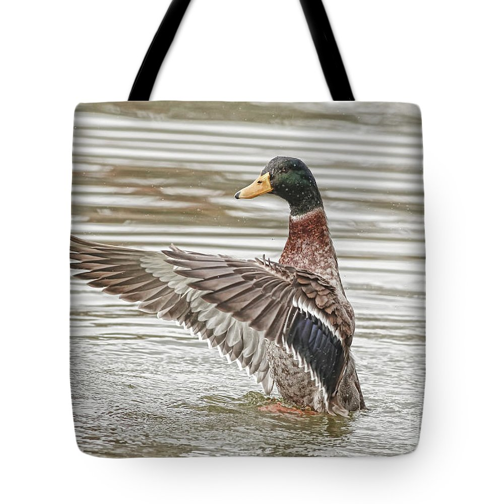 Wildlife Tote Bag featuring the photograph Watch Me Play by Deborah Benoit