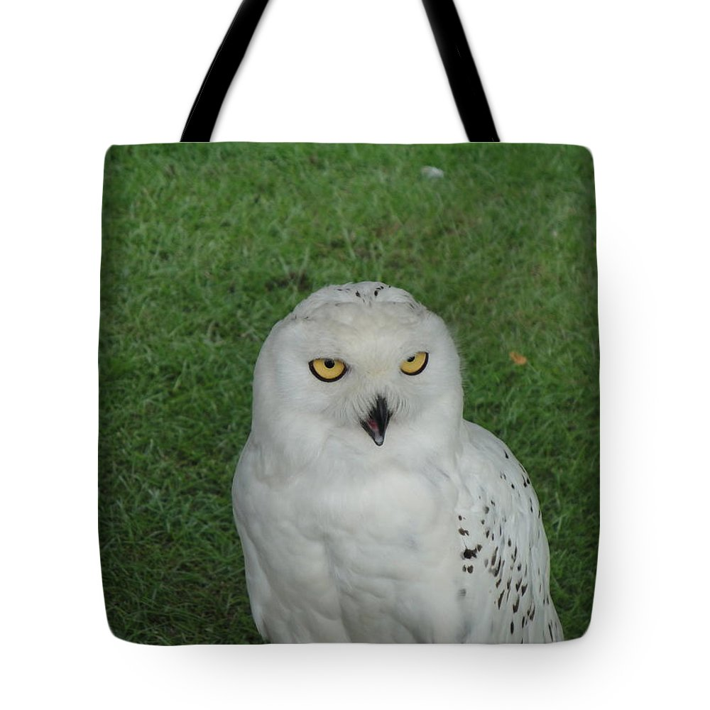 Owl Tote Bag featuring the photograph Watching Owl by Susan Baker