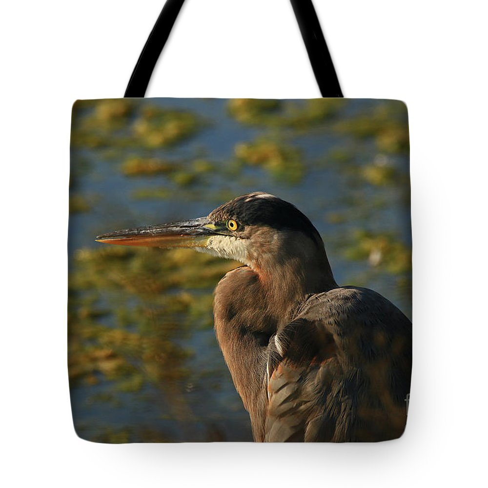 Great Tote Bag featuring the photograph Watching The Sunset by Craig Corwin