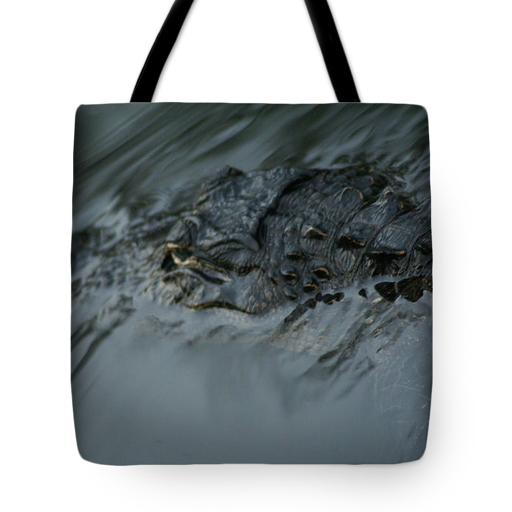 Gators Tote Bag featuring the photograph Wild Florida, Watching You by Deb Bailey