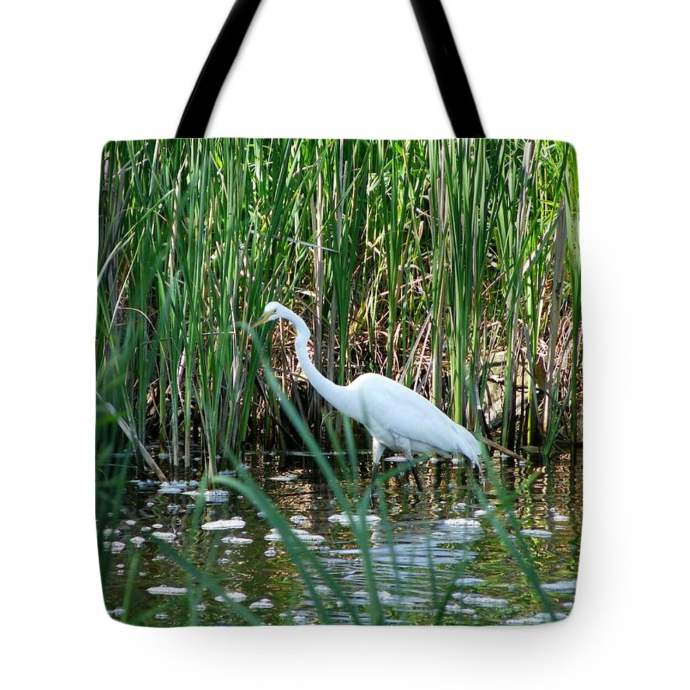 Nature Tote Bag featuring the photograph Watching You Watching Me by Peggy King