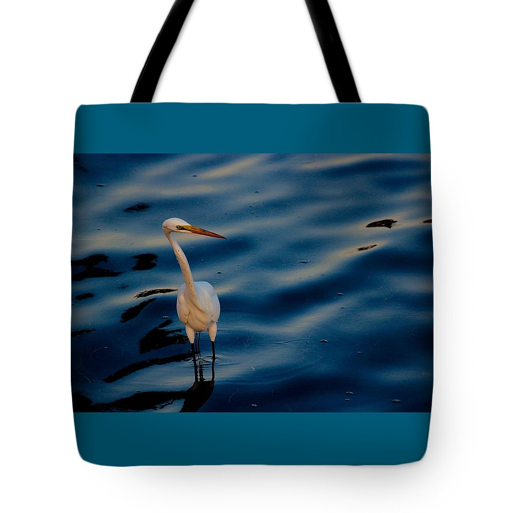 Water Bird Series Tote Bag featuring the photograph Water Bird Series 31 by Stephen Poffenberger