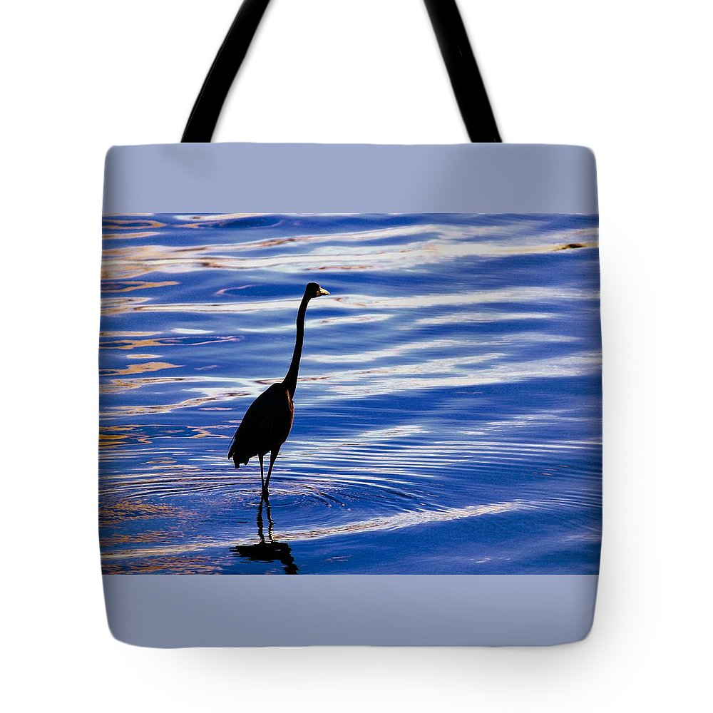Water Bird Series Tote Bag featuring the photograph Water Bird Series by Stephen Poffenberger