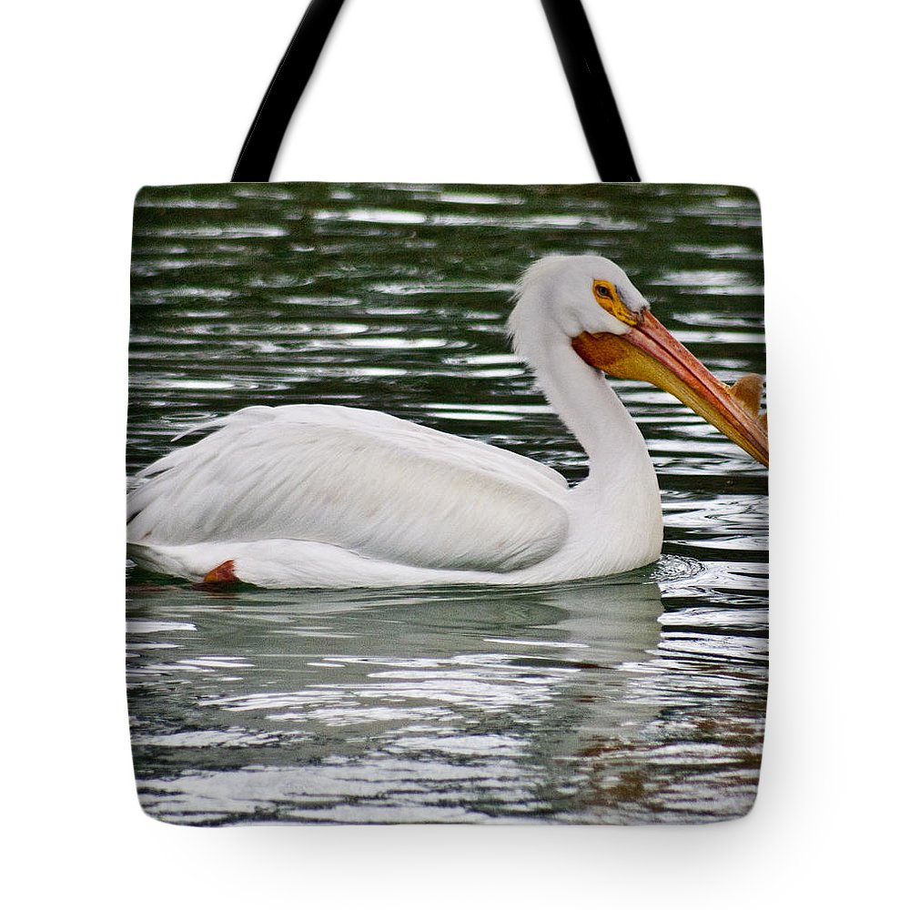 Water Tote Bag featuring the photograph Water Bird With Notches by Douglas Barnett