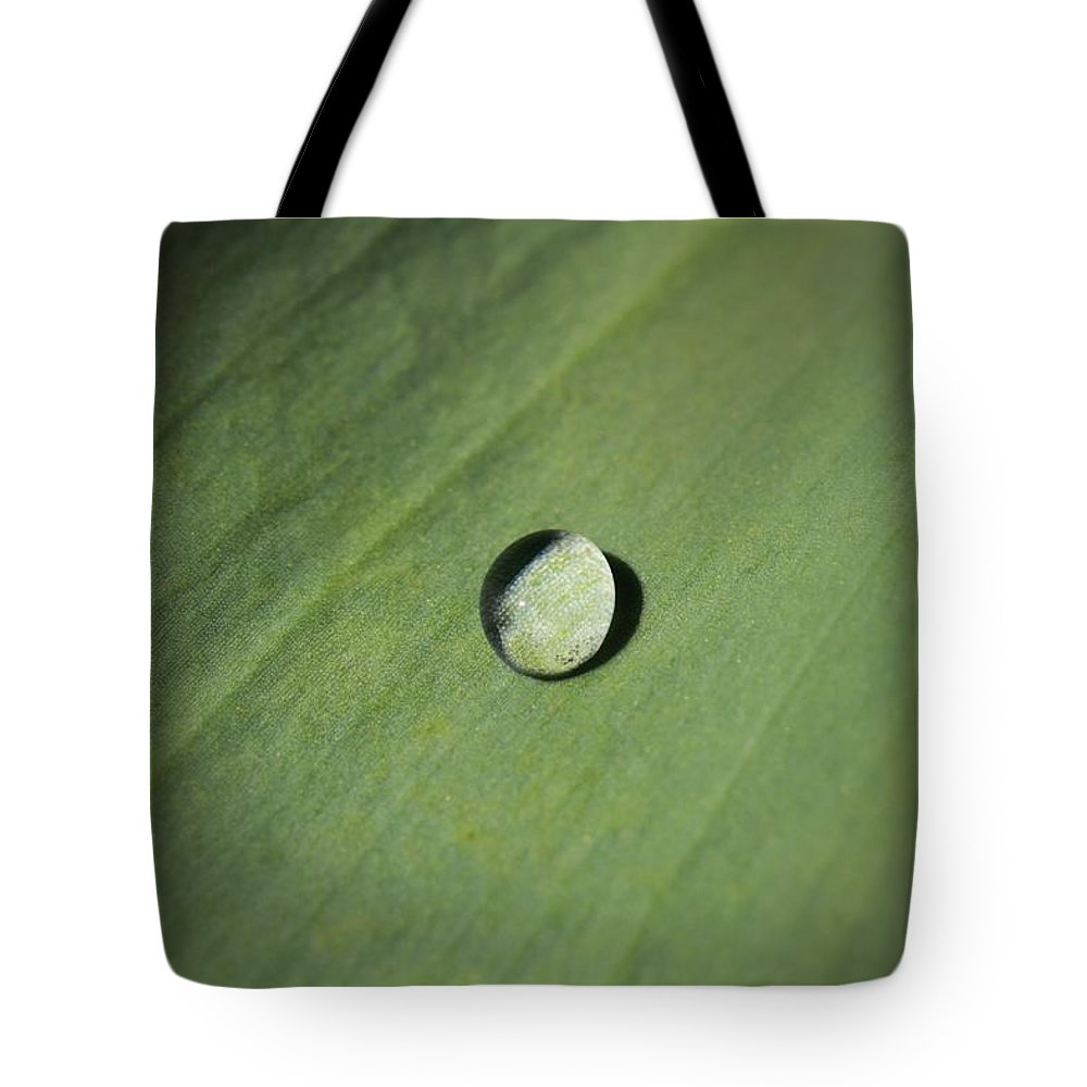 Water Droplet On Green Leaf Tote Bag featuring the photograph Water Droplet On Green Leaf by Dan Sproul