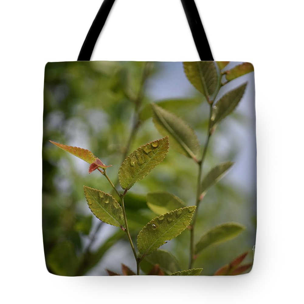 Water Tote Bag featuring the photograph Water Droplets by Anita Goel