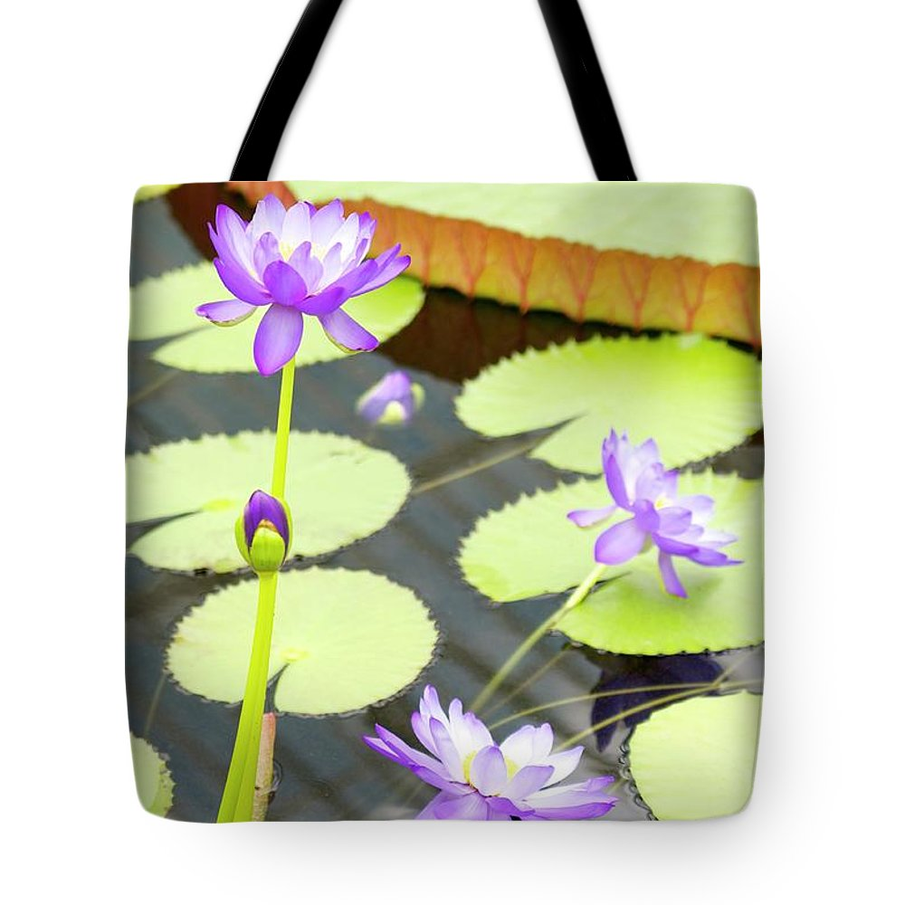 Water Tote Bag featuring the photograph Water Lilies by Porter Glendinning