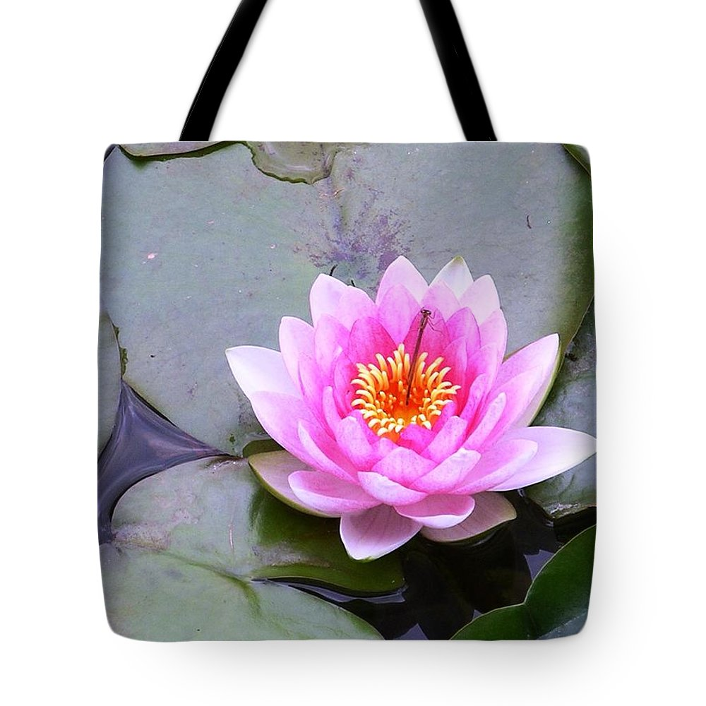 Flower Tote Bag featuring the photograph Water Lily 1 by Rich Bodane