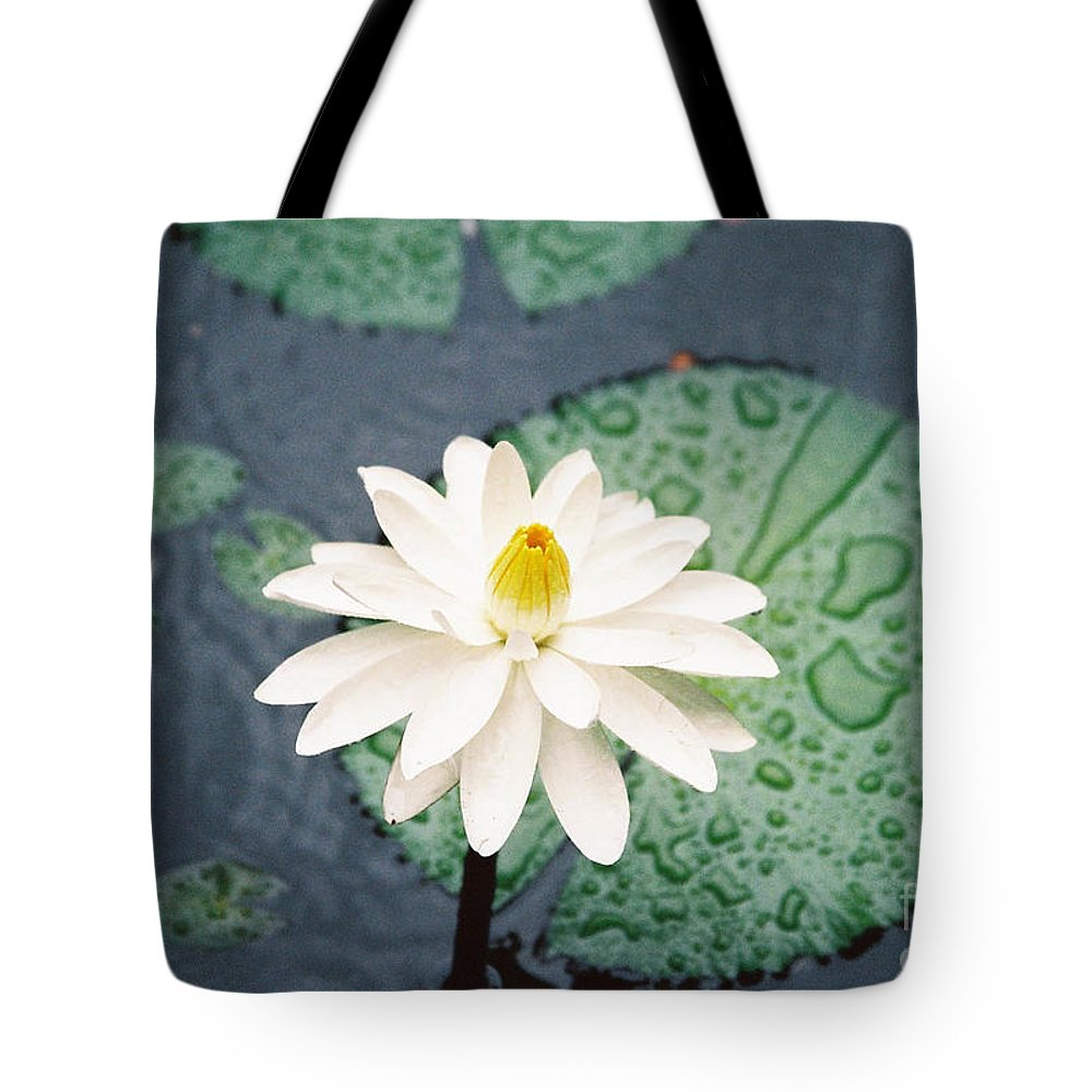 Flowers Tote Bag featuring the photograph Water Lily by Kathy McClure
