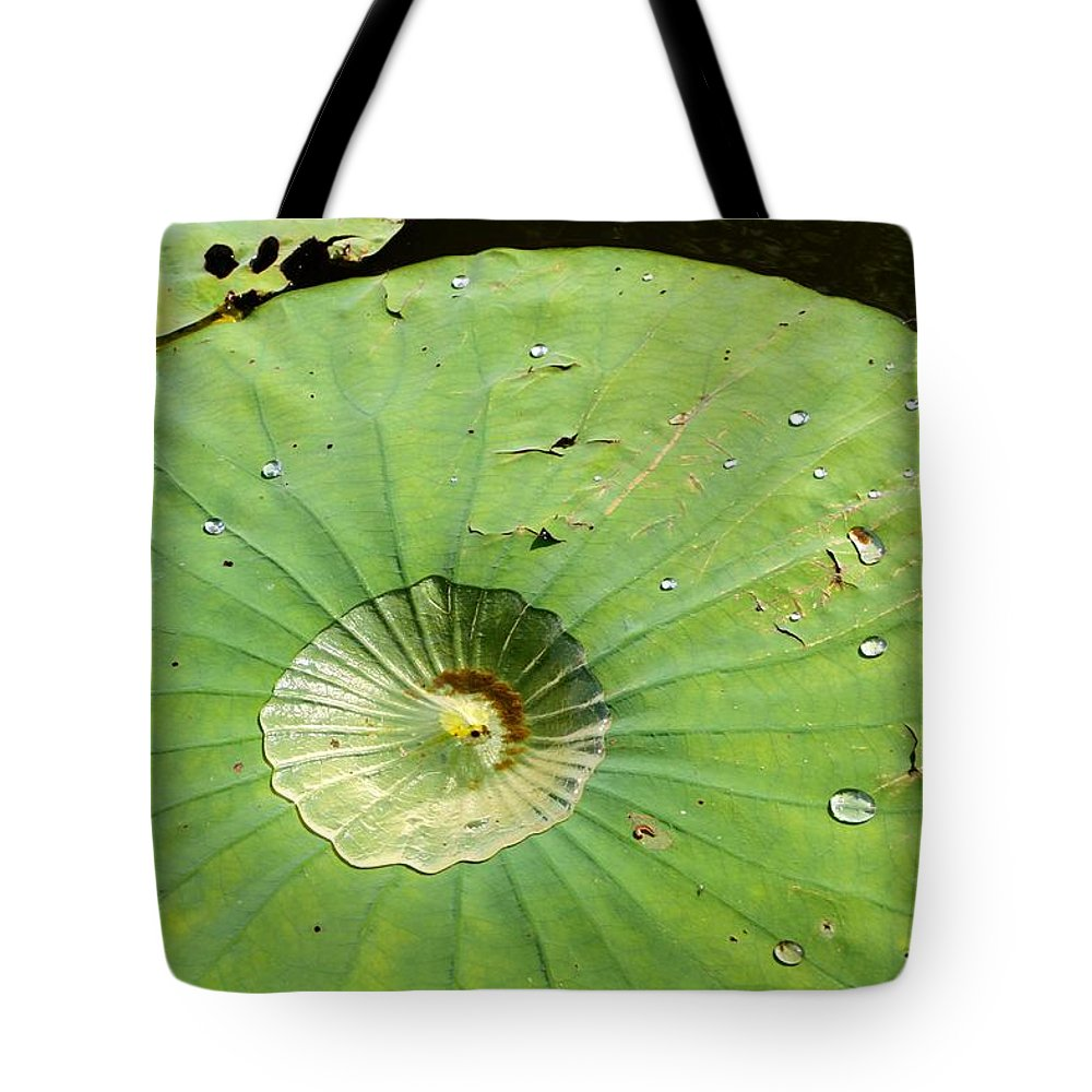 Water Tote Bag featuring the photograph Water Lily by Matthew Felder