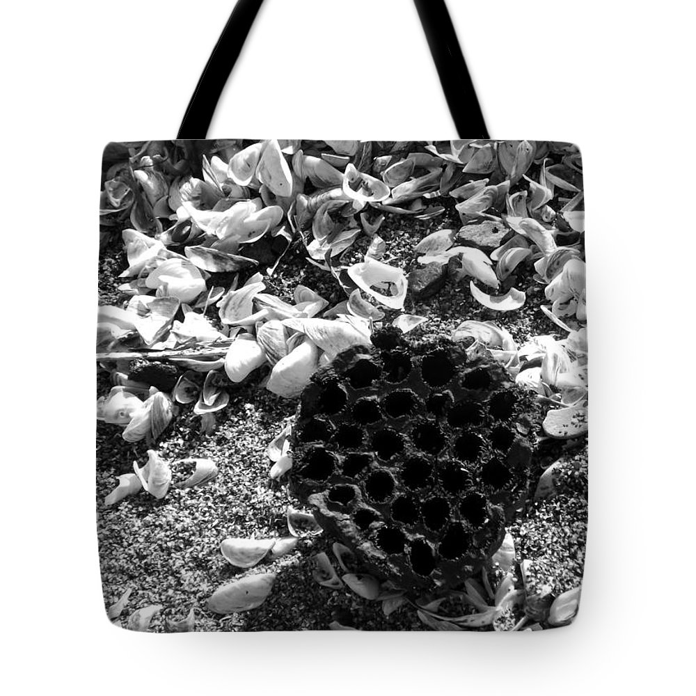Water Lotus Tote Bag featuring the photograph Water Lotus And Shells In Bw by Sara Raber