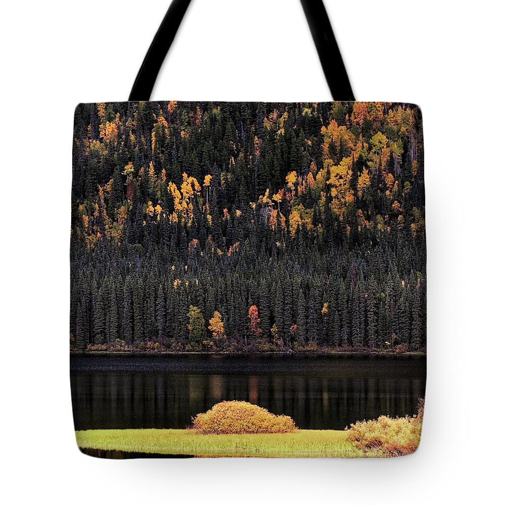 Autumn Tote Bag featuring the digital art Water Reflections In Autumn by Mark Duffy