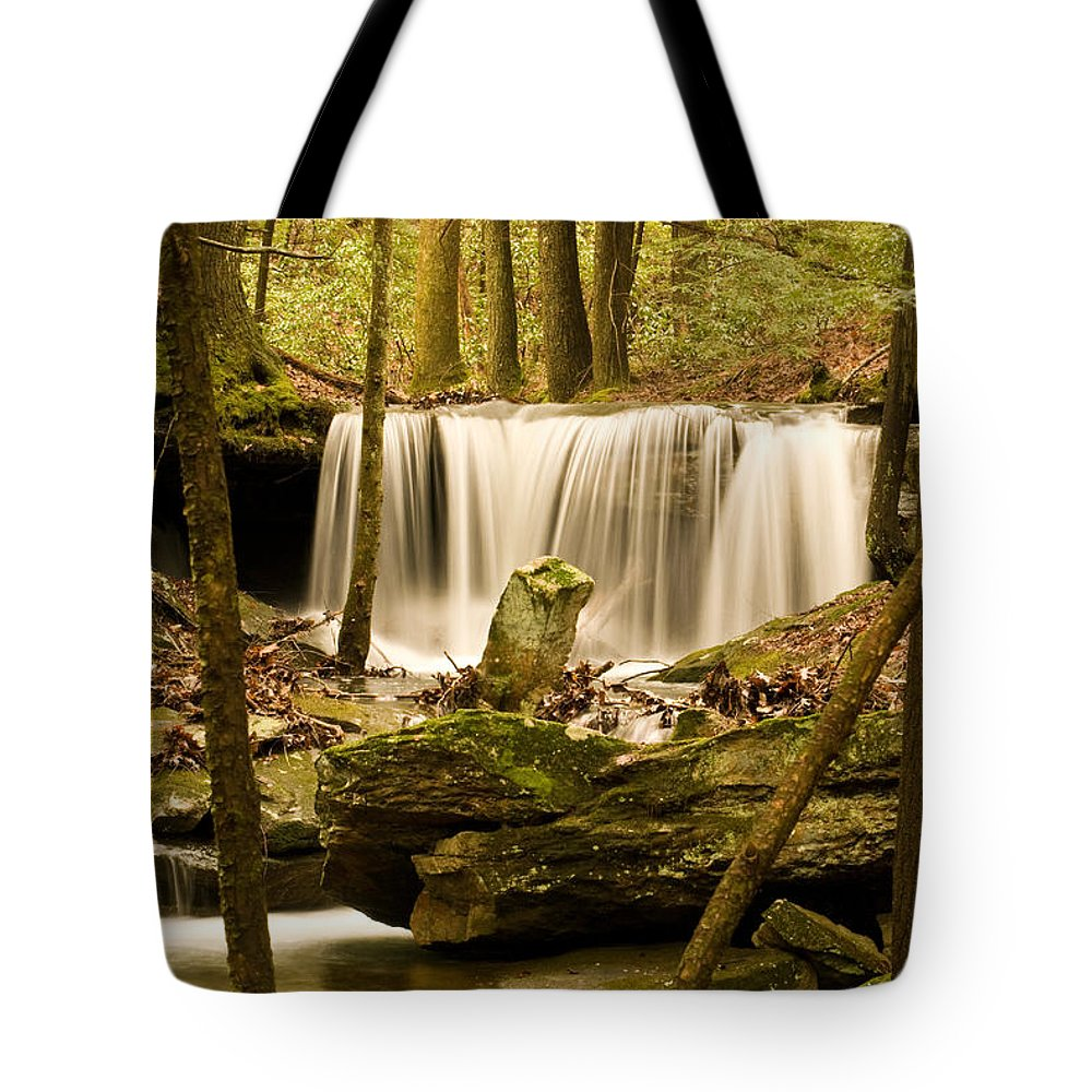 Waterfall Tote Bag featuring the photograph Waterfall At The Ruins by Douglas Barnett