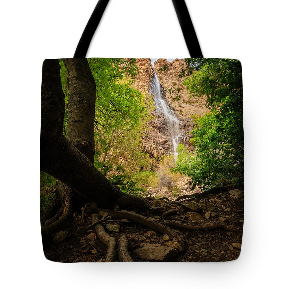 Trailsxposed Tote Bag featuring the photograph Waterfall Canyon by Gina Herbert