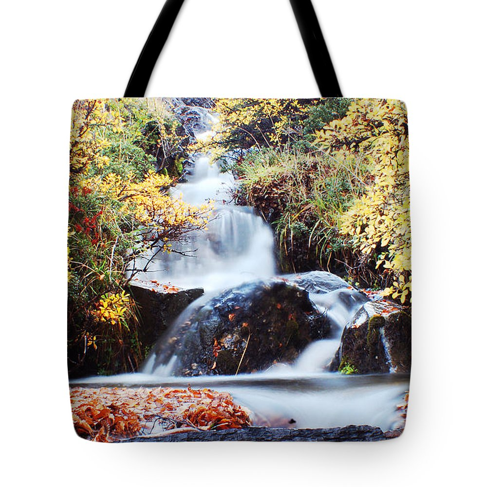 Tote Bag featuring the photograph Waterfall In Autumn by Mircea Costina Photography