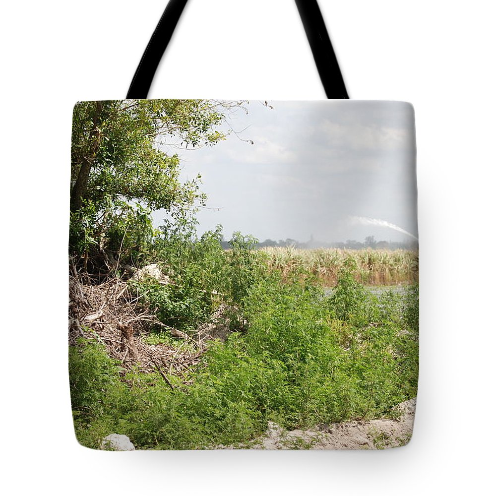 Leaves Tote Bag featuring the photograph Watering The Weeds by Rob Hans