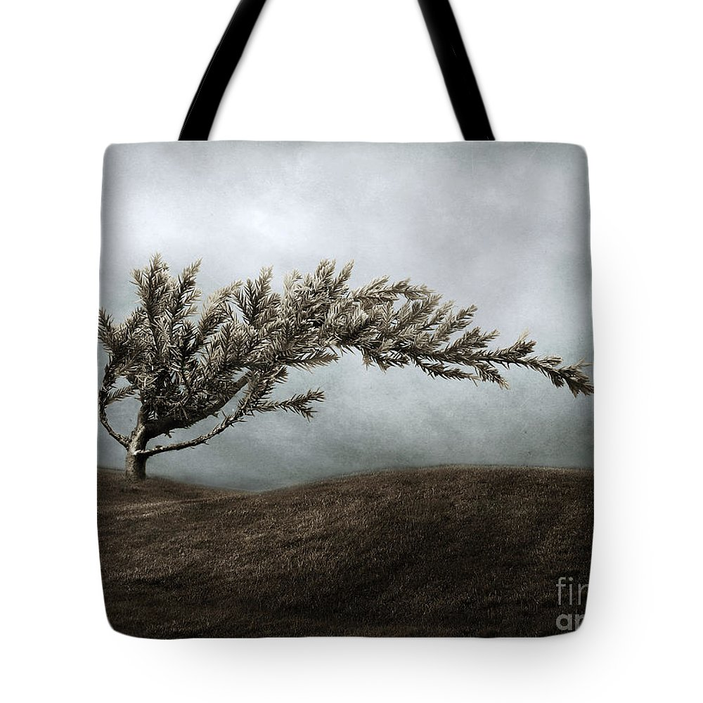 Bend Tote Bag featuring the photograph We Break And We Bend And We Turn Ourselves Inside Out by Dana DiPasquale