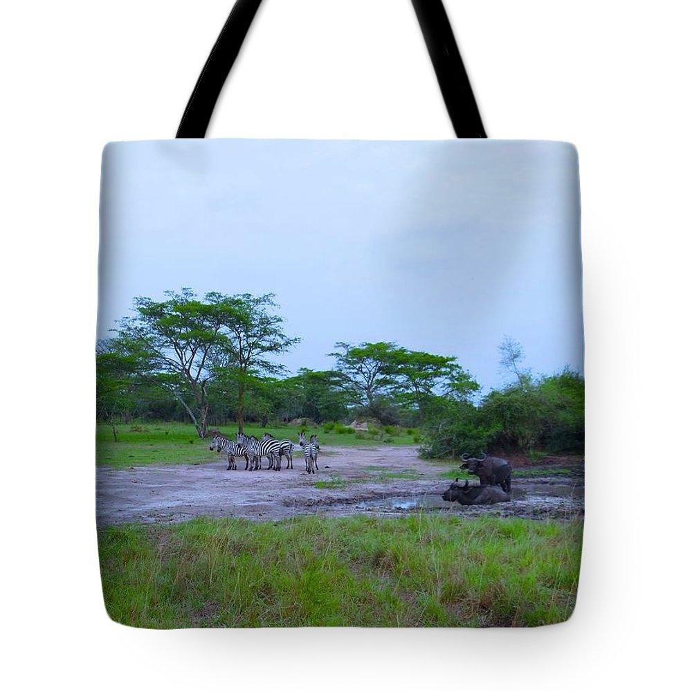Exploramum Tote Bags