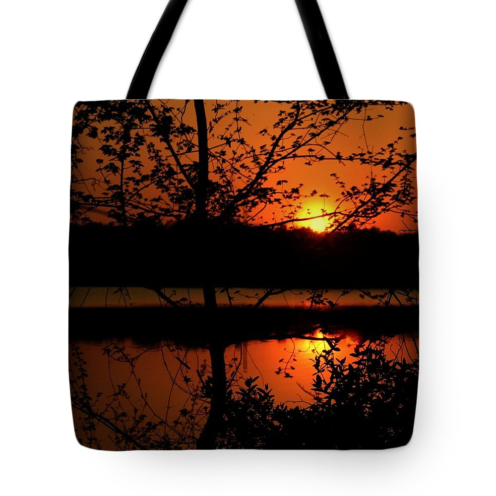 Landscape Tote Bag featuring the photograph Wealth Of Nature by Mitch Cat