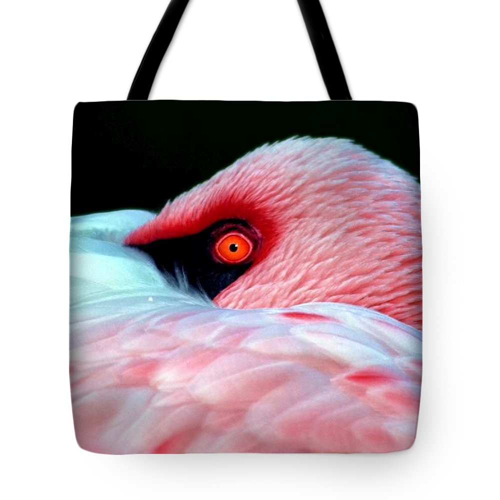 Pink Tote Bag featuring the photograph Wearing Pink by Mitch Cat