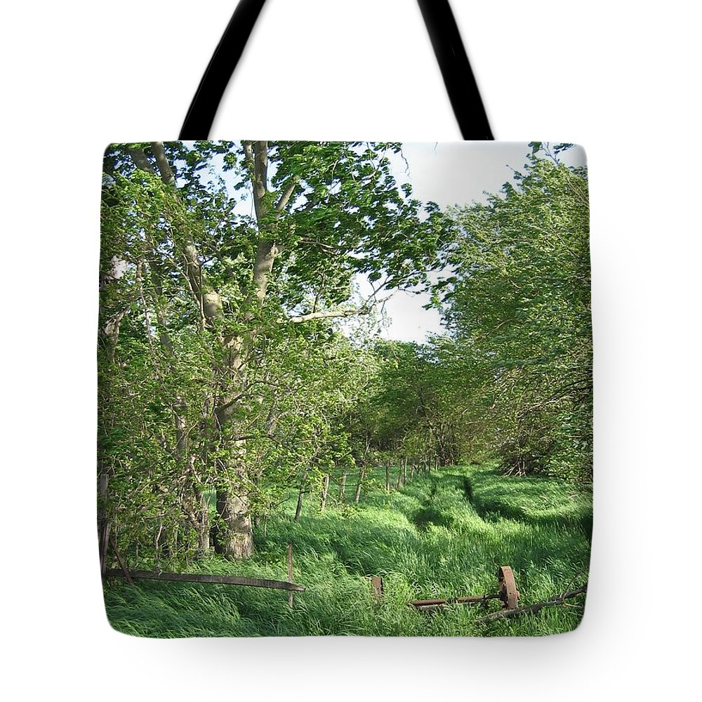 Landscape Tote Bag featuring the photograph Weary Traveler by Dylan Punke