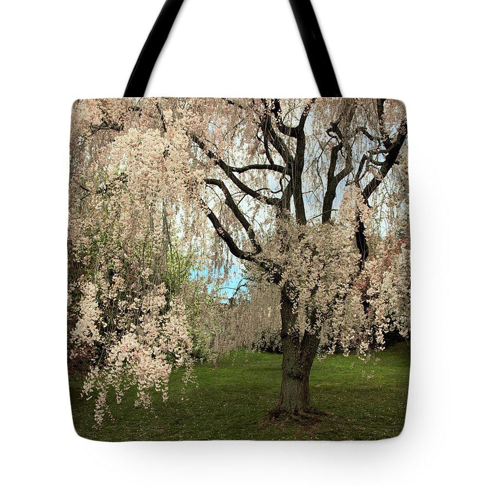 Tree Tote Bag featuring the photograph Weeping Asian Cherry by Jessica Jenney