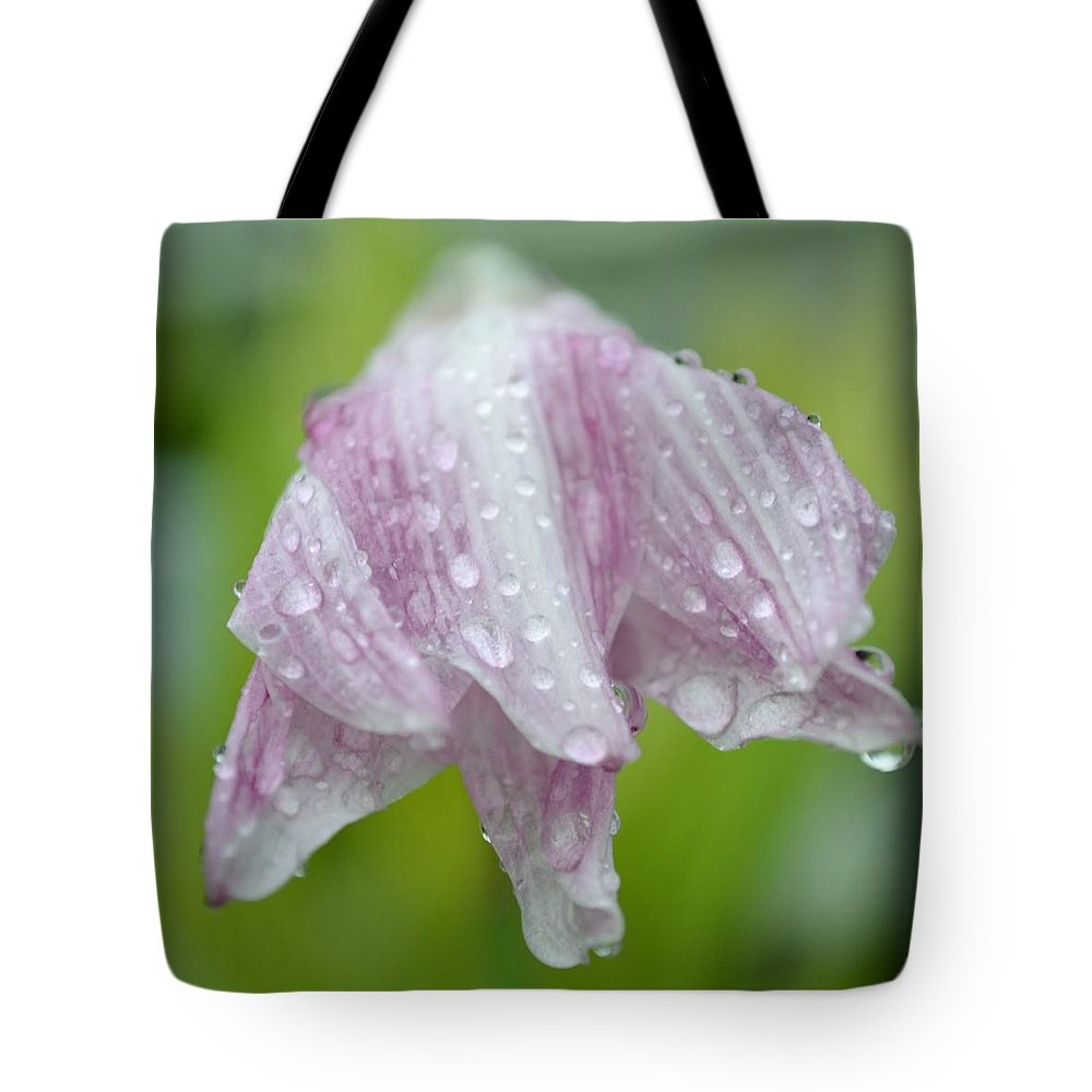 Lily Tote Bag featuring the photograph Weeping Lily by Melanie Moraga
