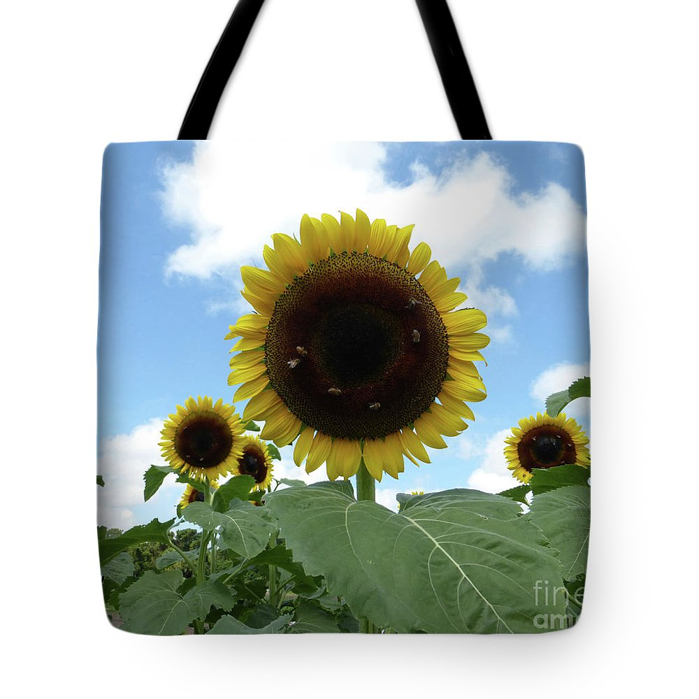 Sunflower Tote Bag featuring the photograph Welcome Friends by To-Tam Gerwe