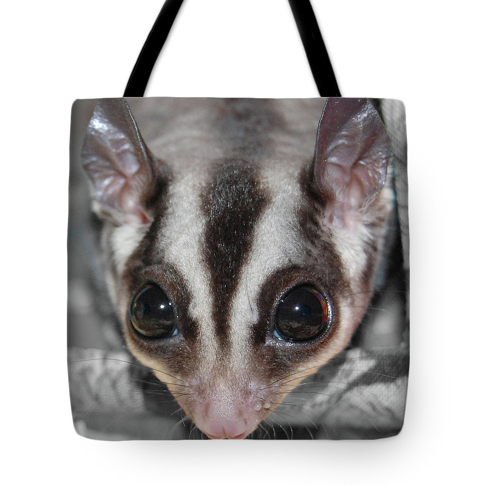 Sugar Glider Tote Bag featuring the digital art Well Hello There by DigiArt Diaries by Vicky B Fuller