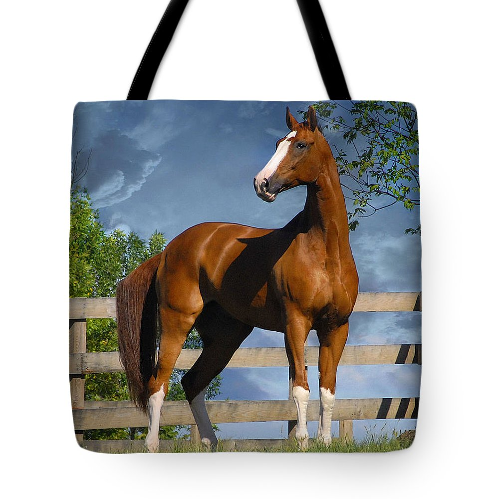 Horses Tote Bag featuring the photograph Welt Adel by Fran J Scott