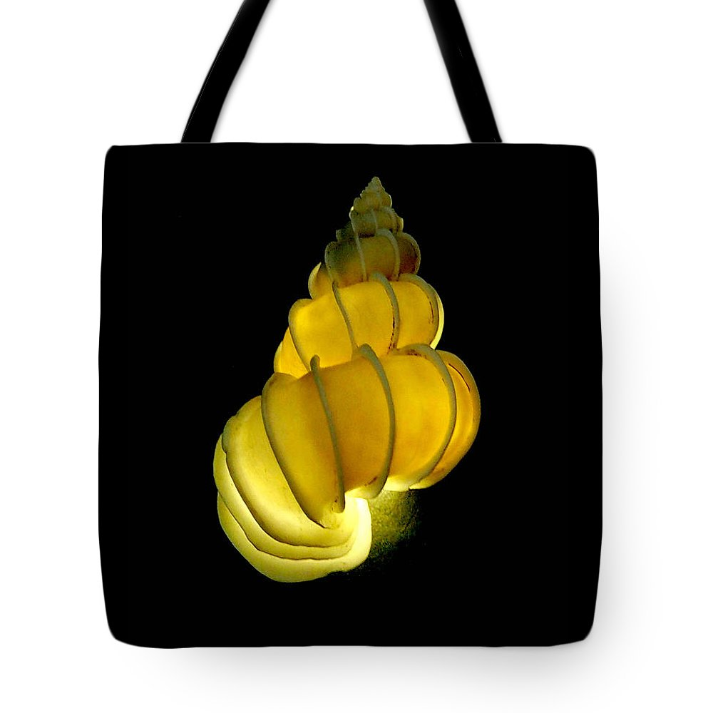 Seashell Tote Bag featuring the photograph Wentletrap Seashell by MuzioArt Photography