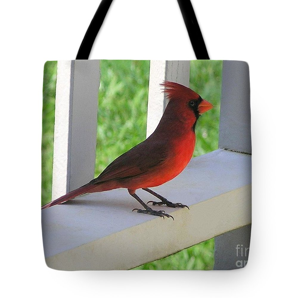 Mary Deal Tote Bag featuring the photograph Western Cardinal by Mary Deal