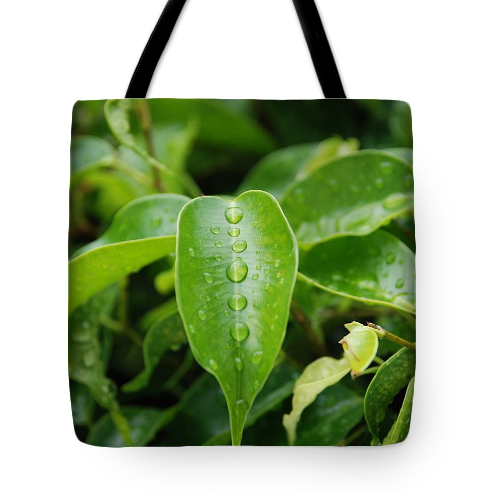 Macro Tote Bag featuring the photograph Wet Bushes by Rob Hans