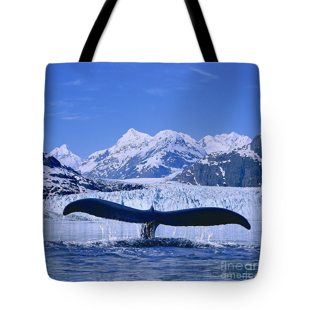 Alaska Tote Bag featuring the photograph Whale Fluke by John Hyde - Printscapes