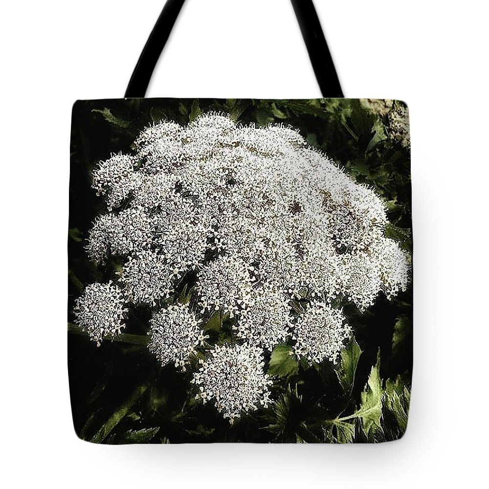 Flowers Tote Bag featuring the photograph What Flower Is This? I Think It's by Mr Photojimsf