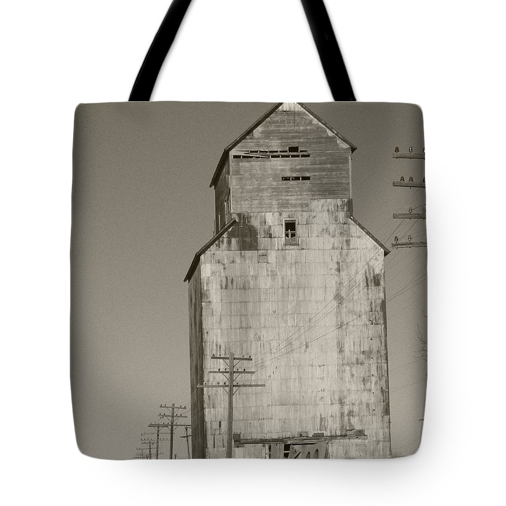 Landscape Tote Bag featuring the photograph What Once by Dylan Punke