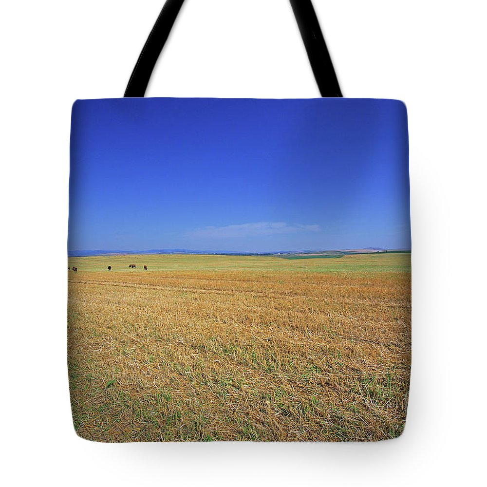 Landscape Tote Bag featuring the photograph Wheat Field After Harvest by Cosmin-Constantin Sava