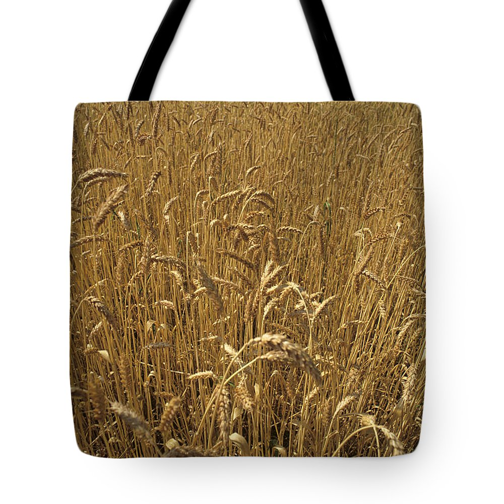 Wheat Tote Bag featuring the photograph Wheat Field by Kenneth Garrett
