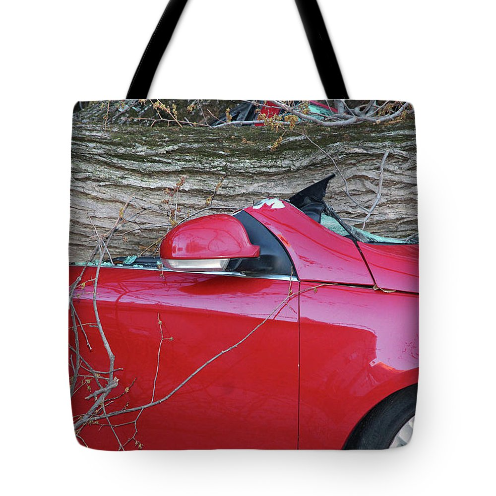 Tree Tote Bag featuring the photograph When A Tree Falls - 2 by Cora Wandel