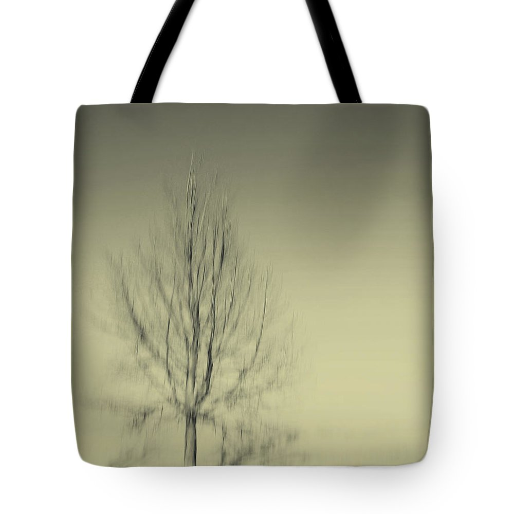 Dipasquale Tote Bag featuring the photograph When You Wake Up I Will Have Gone by Dana DiPasquale