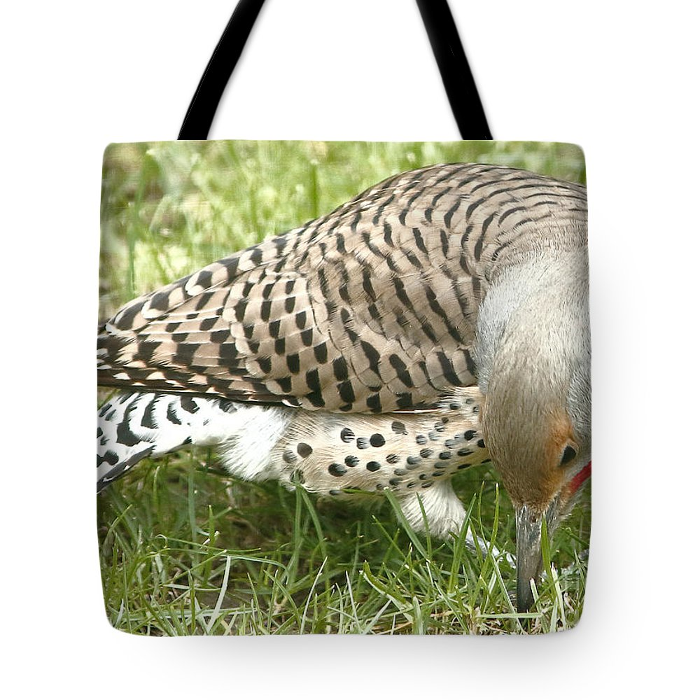 Flicker Tote Bag featuring the photograph Where Is That Grub? by Marland Howard