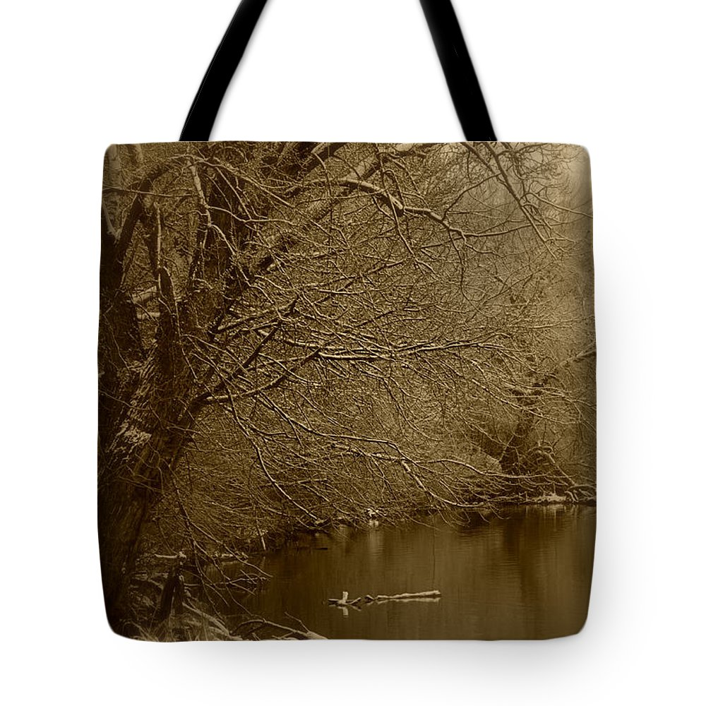 Winter Tote Bag featuring the photograph Where The Otters Play by Carol Groenen