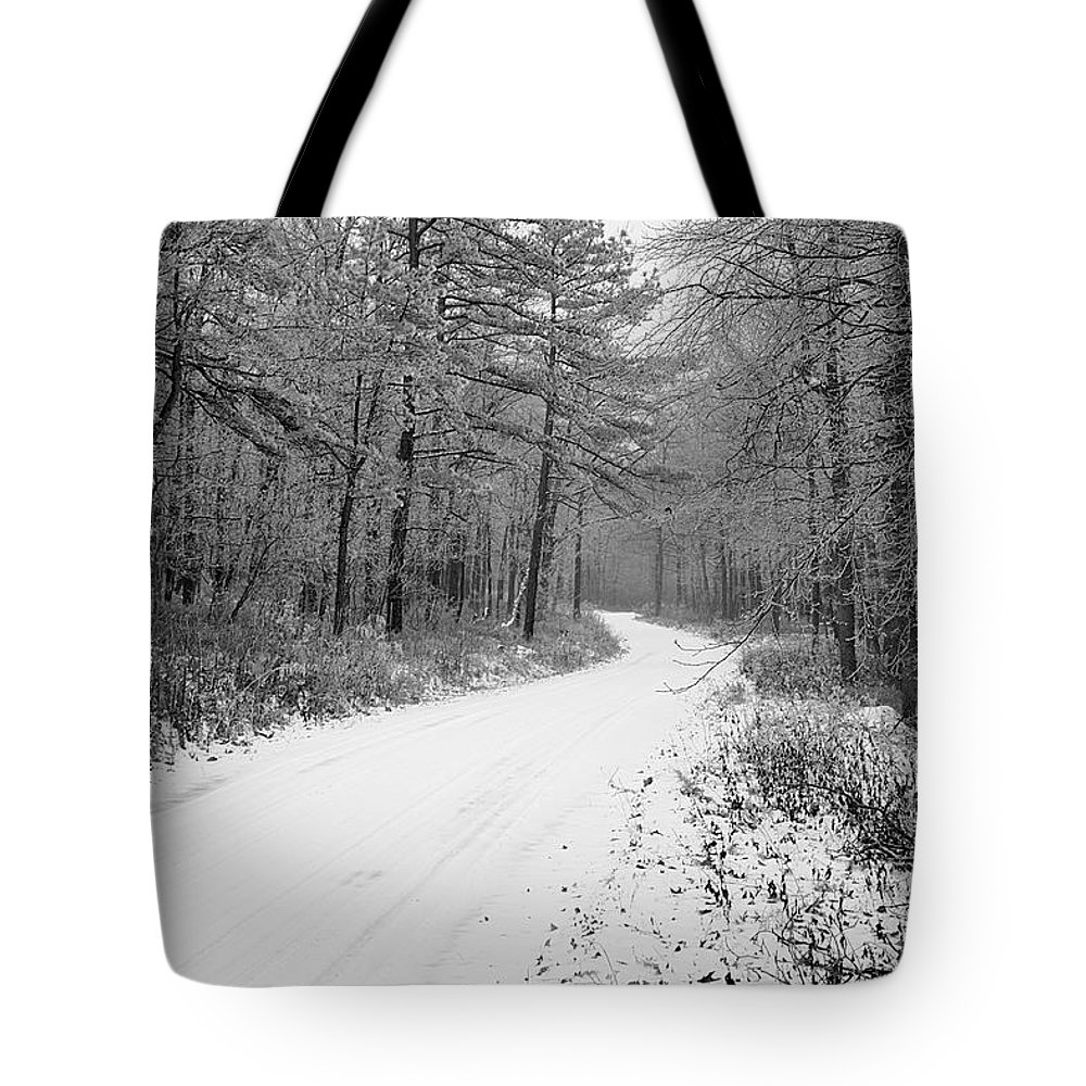Winter Tote Bag featuring the photograph Where Will It Lead by Jean Macaluso