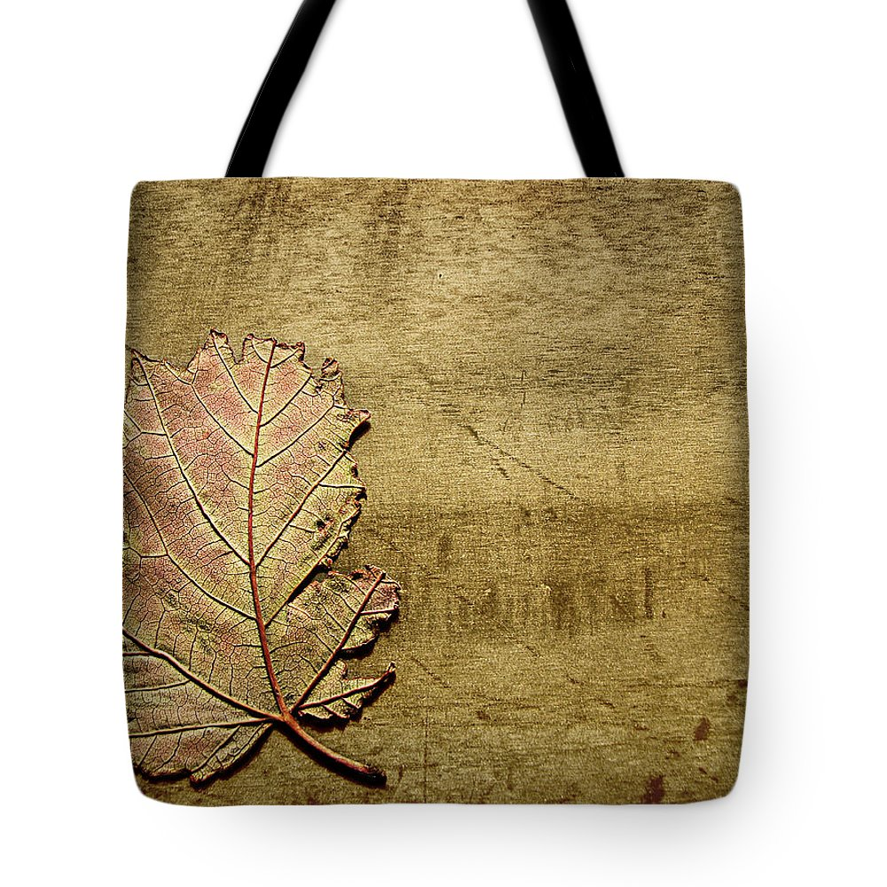 Autumn Tote Bag featuring the photograph ...while You Fall Apart by Dana DiPasquale